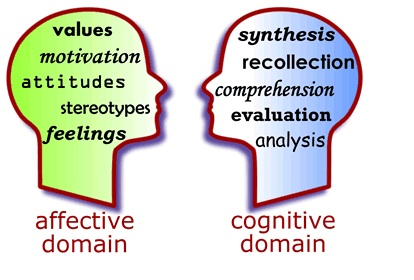 understanding the theories of cognitive process Cognitive processes are not only emergent brain activities they also exert   operation of the triadic factors one can gain understanding of how different.